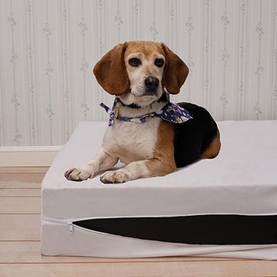 Pet Bed Allergy Cover